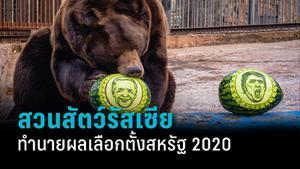 สวนสัตว์รัสเซียใช้สัตว์ทำนายผลเลือกตั้งสหรัฐ 2020