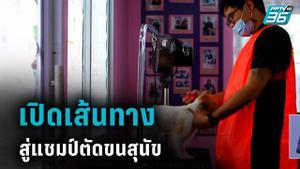 เปิดใจ แชมป์ตัดขนสุนัข ประเทศไทย ปี 2020