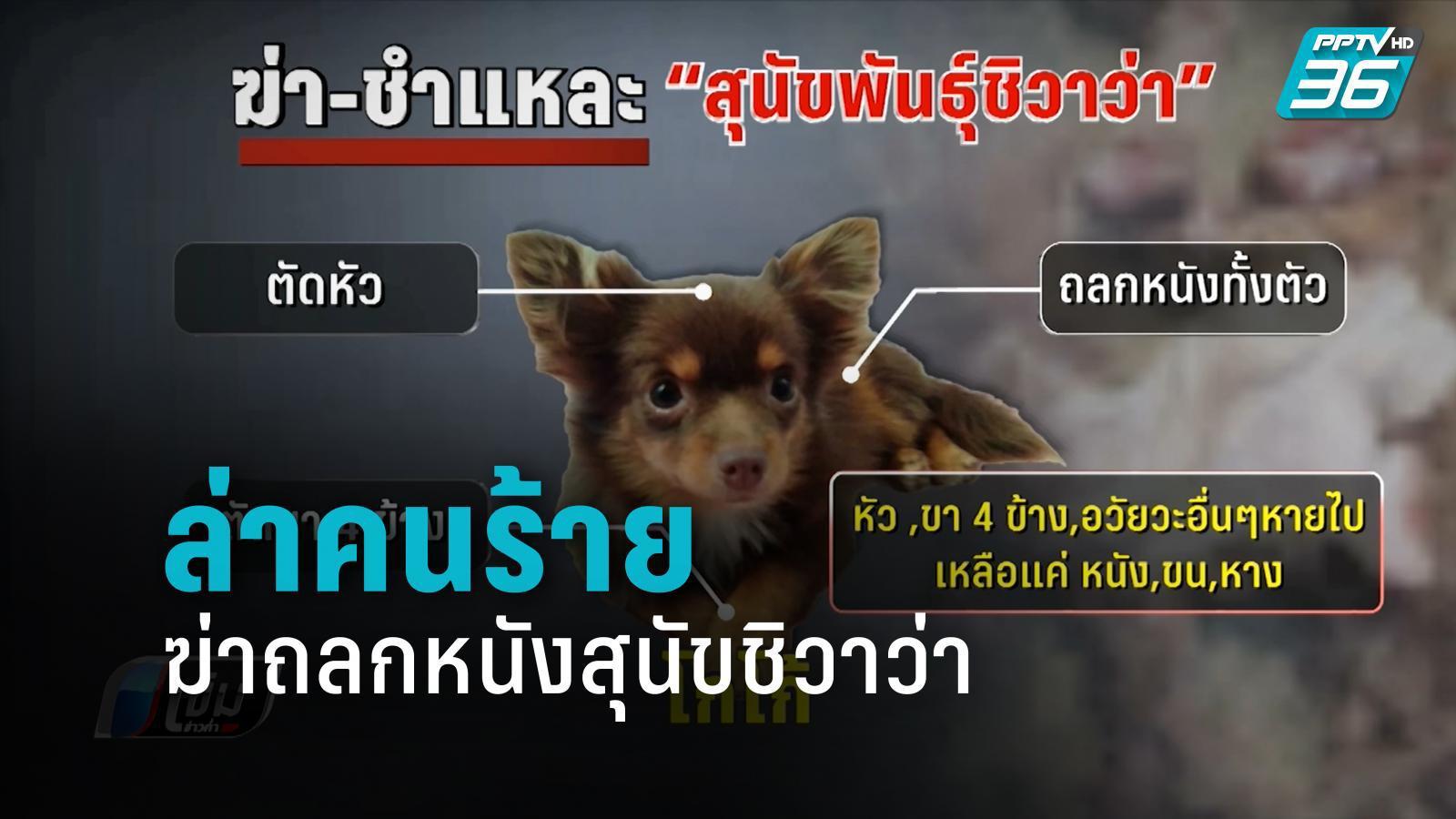 ตร.ตามล่าคนร้ายฆ่าถลกหนังสุนัขชิวาว่า-ส่งซากชันสูตร