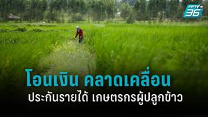 ธ.ก.ส. แจง โอนเงินประกันรายได้ เกษตรกรผู้ปลูกข้าว คลาดเคลื่อน