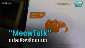 """เปิดตัวแอปฯ """" MeowTalk"""" แปลเสียงร้องแมว"""