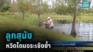 คุณปู่โดดลงน้ำ ช่วยลูกสุนัข หวิดโดนจระเข้ขย้ำ