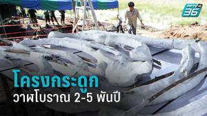 ขุดโครงกระดูกวาฬโบราณ 2-5 พันปี เก่าแก่สุดในไทย