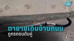 ตายายเดินข้ามถนนไปเบิกเงินผู้สูงอายุ ถูกรถชนเสียชีวิต