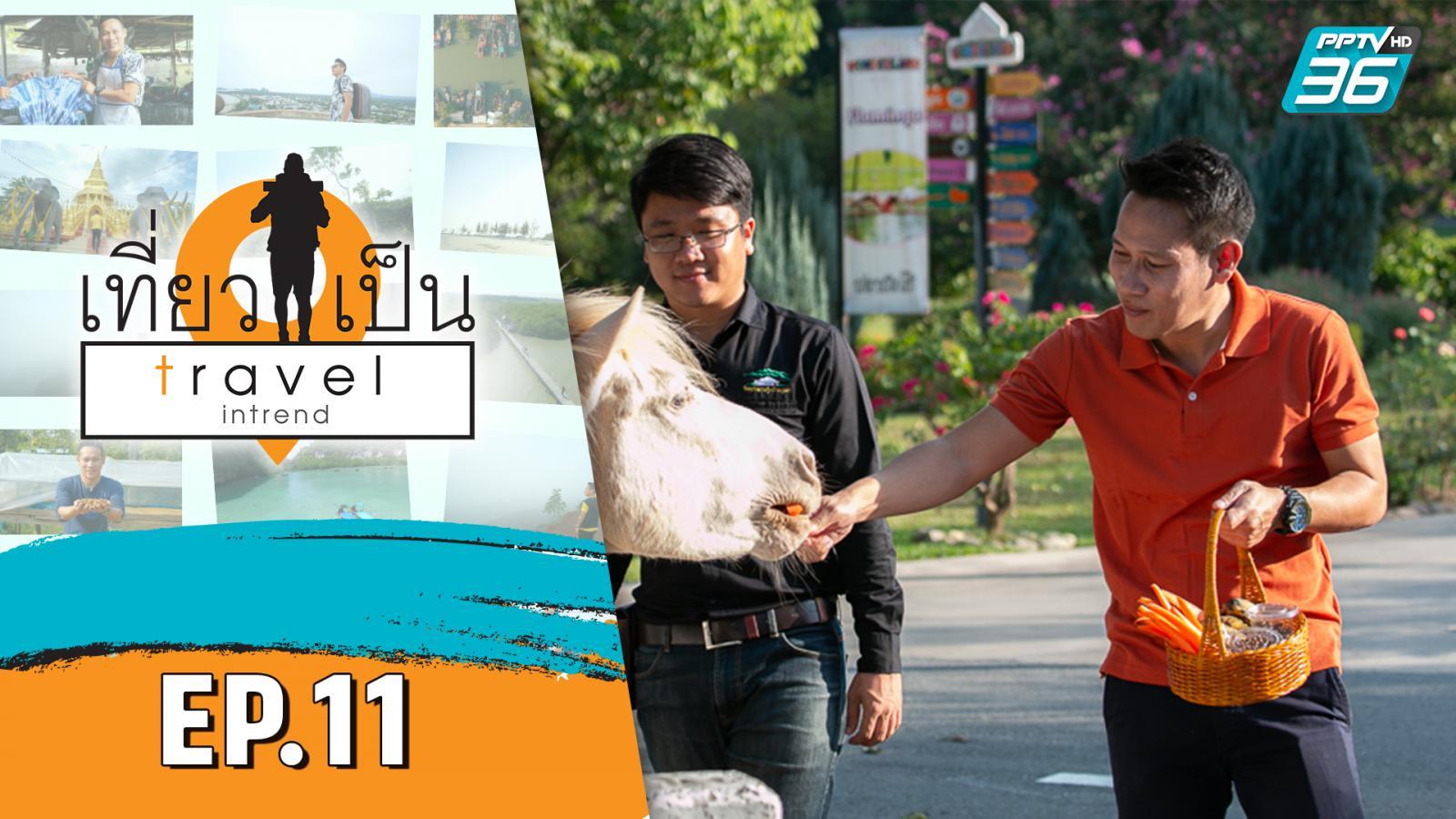 เที่ยวเป็น Travel Intrend EP.11 | ตอน สระบุรี | 14 พ.ย.63