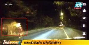 กระบะซิ่งแข่ง ก่อนเสียหลักพุ่งชนต้นไม้ คนขับกระเด็นออกนอกรถ ดับคาที่ 1