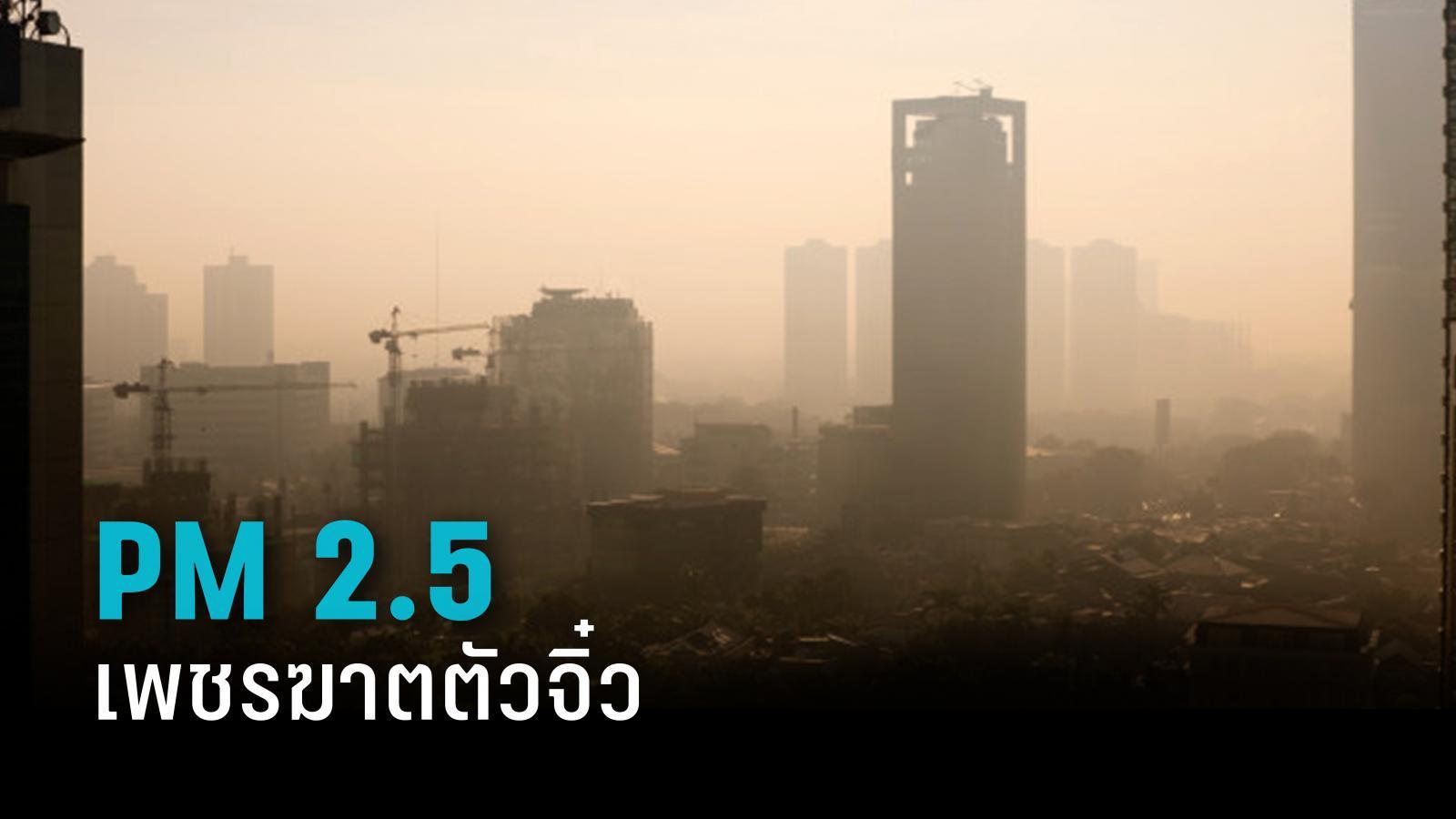 เอาชนะ PM 2.5 เพชรฆาตตัวจิ๋ว