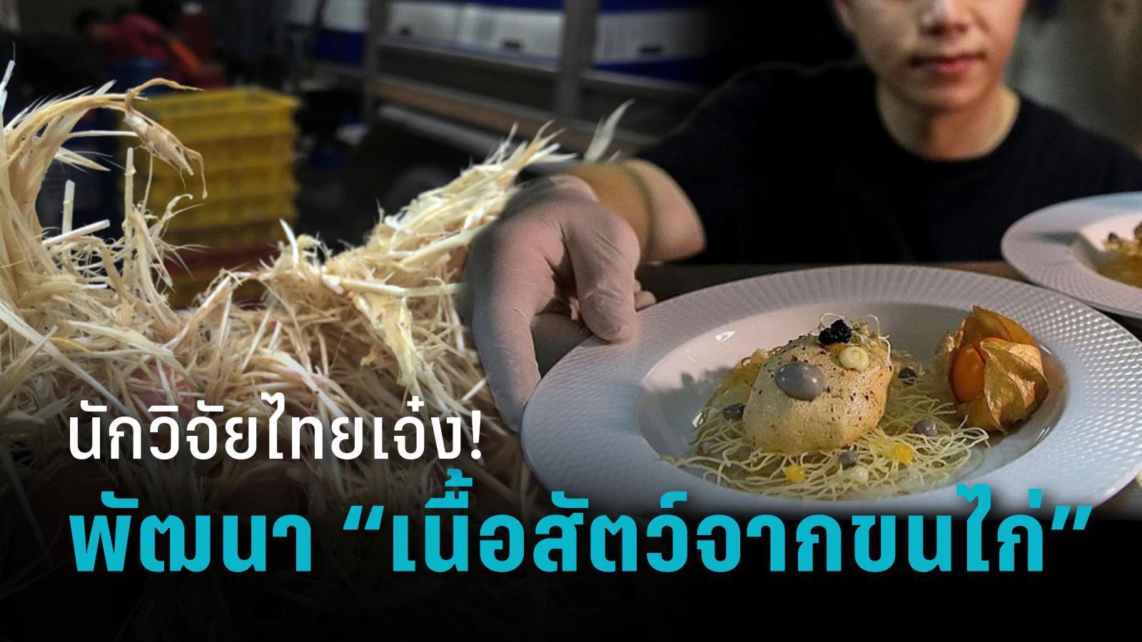 """นักวิจัยไทยเจ๋ง! พัฒนา """"เนื้อสัตว์จากขนไก่"""" อาหารแห่งอนาคต"""