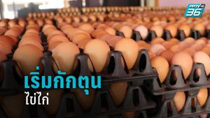 เริ่มกักตุนไข่ไก่ หลังราชบุรีพื้นที่สีแดง