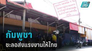 """""""กัมพูชา ชะลอส่งแรงงานตัดอ้อยให้ไทย"""