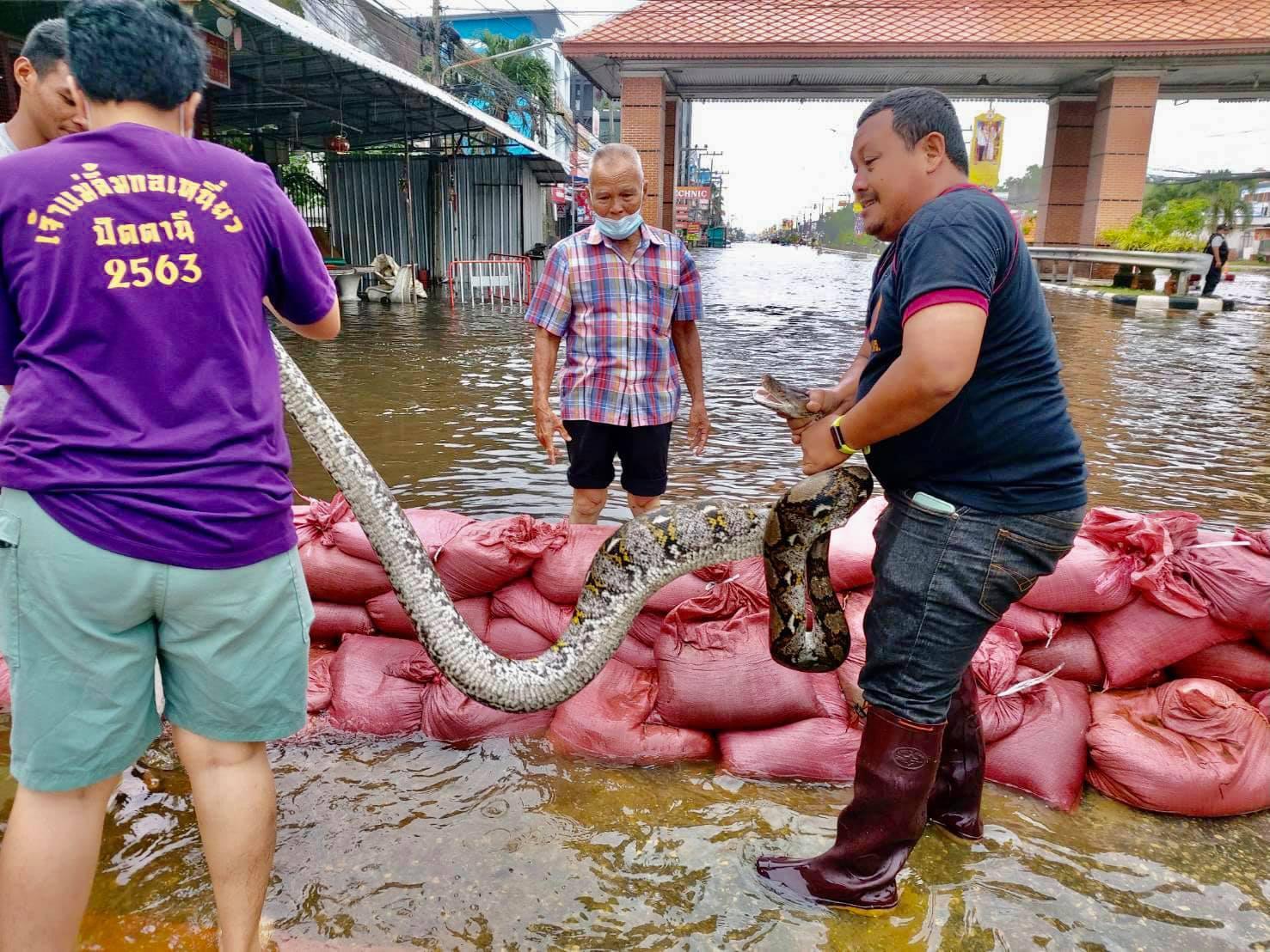 ปัตตานียังเดือดร้อน น้ำท่วมตัวเมือง นายกฯสั่งทุกหน่วยเร่งดูแล