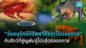 """14 มกราคม """"วันอนุรักษ์ทรัพยากรป่าไม้แห่งชาติ"""" กับสัตว์ที่สูญพันธุ์ไปแล้วตลอดกาล"""