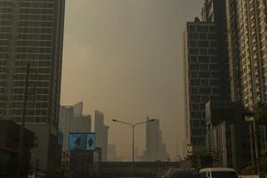กรุงเทพฯ ปริมณฑล จมฝุ่น PM 2.5 หนัก หลายจังหวัดเริ่มกระทบต่อสุขภาพ