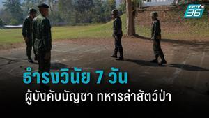 นทพ. สั่ง ธำรงวินัย 7 วัน ผู้บังคับบัญชาทหารล่าสัตว์ป่า