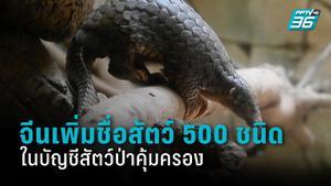 จีนเพิ่มรายชื่อสัตว์กว่า 500 ชนิดในบัญชีสัตว์ป่าคุ้มครอง