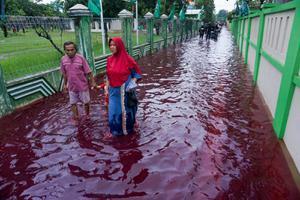น้ำสีแดงฉานทะลักหมู่บ้านอินโดฯ หลังโรงงานย้อมผ้าถูกน้ำท่วม