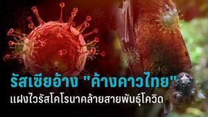 """วารสารวิจัยรัสเซียอ้าง """"ค้างคาวในไทย"""" อาจมีไวรัสโคโรนาสายพันธุ์ใหม่ (โควิด-19) แฝงอยู่"""