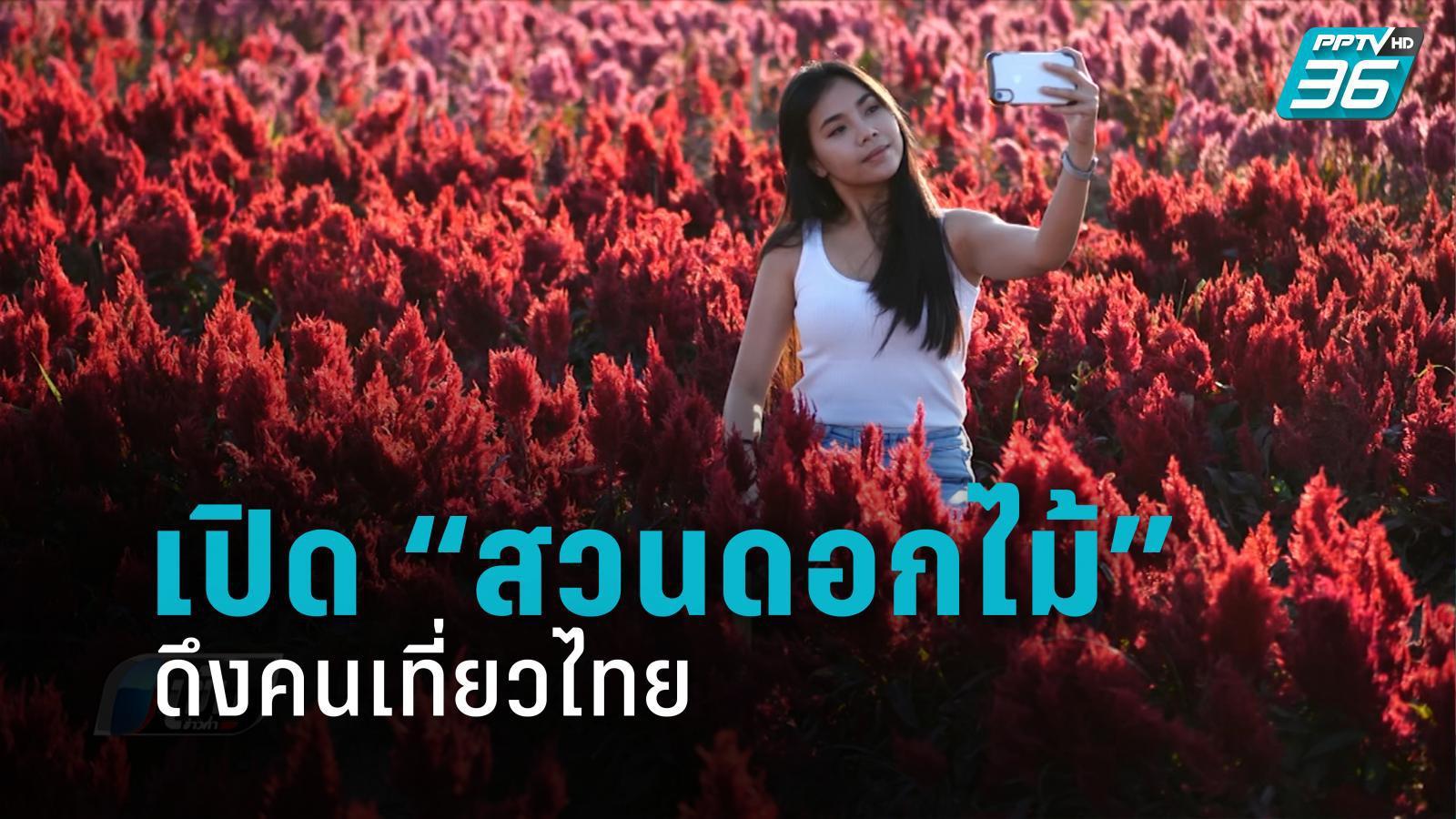 """เชียงใหม่ เปิด """"สวนดอกไม้"""" ดึงคนเที่ยวไทย"""