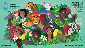 """3 มีนาคม """"วันสัตว์ป่า พืชป่าโลก"""" เมื่อคนกับป่าอยู่ร่วมกันอย่างยั่งยืน"""