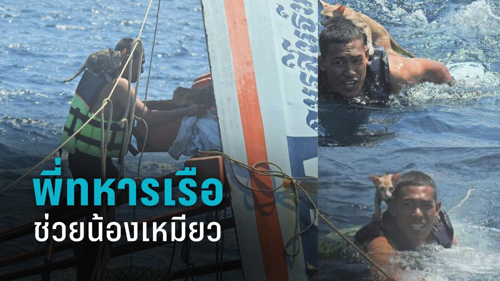 พี่ทหารเรือ ช่วยน้องเหมียว จากเรือที่กำลังจมทะเล