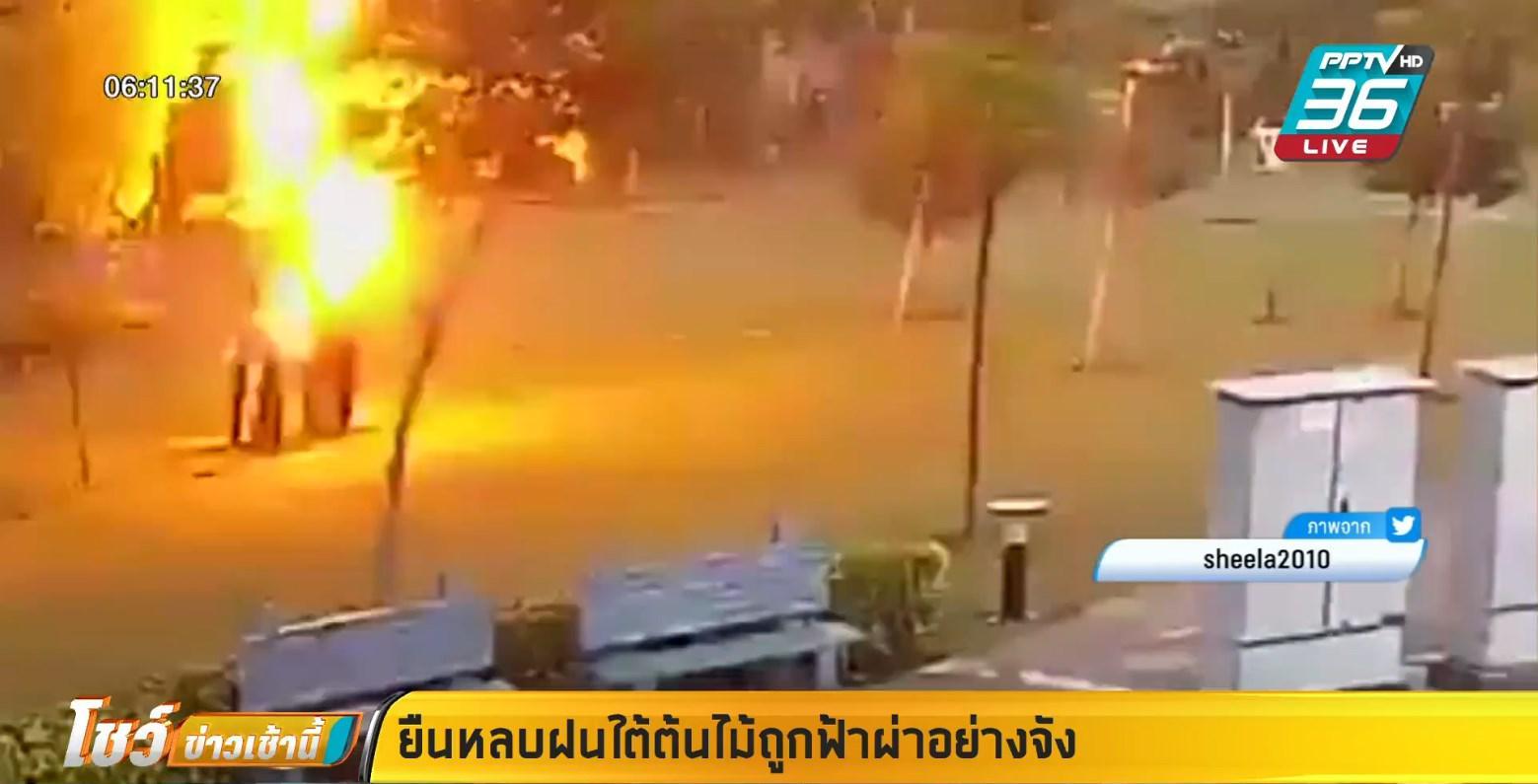 4 หนุ่มถูกฟ้าผ่า หลัง ยืนหลบฝนใต้ต้นไม้
