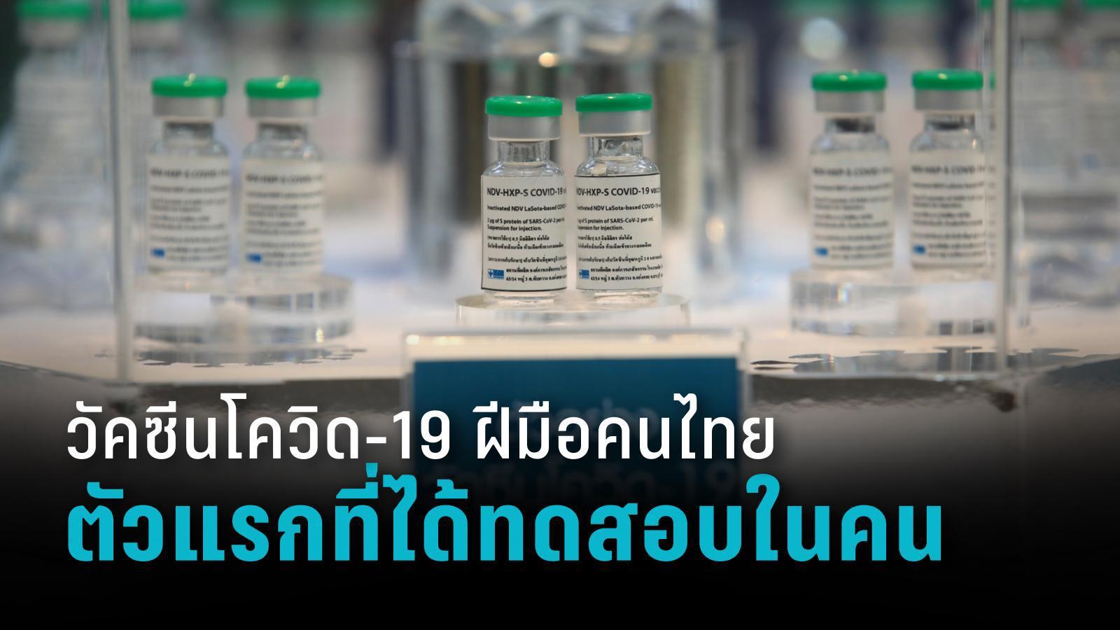 """""""NDV-HXP-S"""" วัคซีนโควิด-19 โดยคนไทยตัวแรกที่ได้รับอนุมัติให้ทดสอบในมนุษย์"""