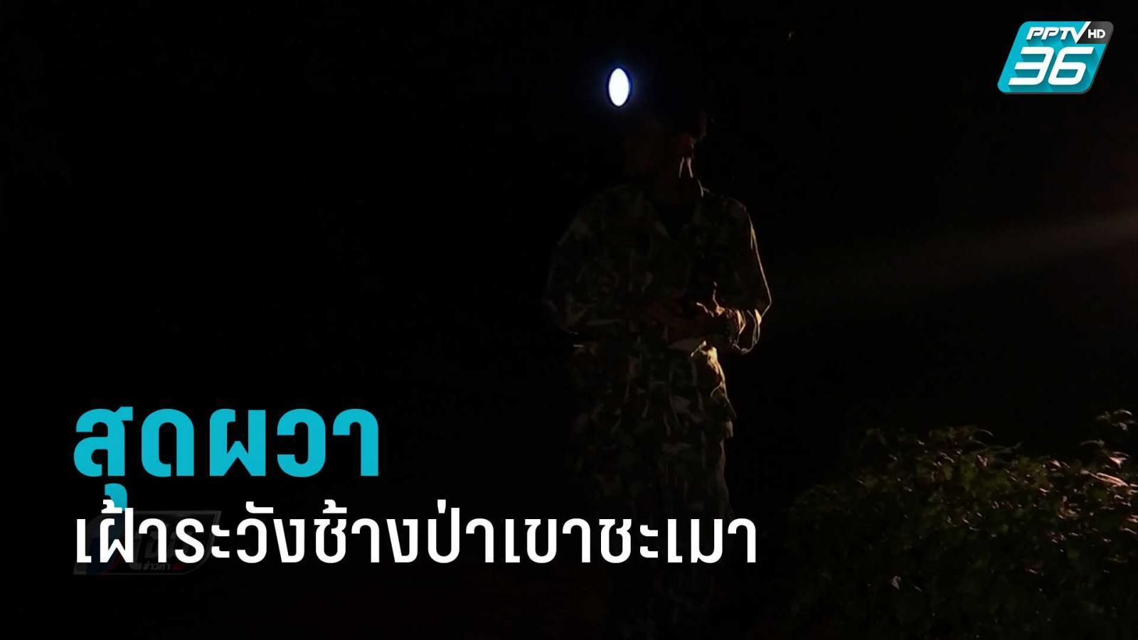 ชาวบ้านผวา จัดชุดเฝ้าระวังช้างป่าเขาชะเมา หลังถูกทำร้ายดับ 2 ศพ