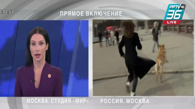 นักข่าวสาวรัสเซียถูกสุนัขวิ่งราวไมโครโฟน