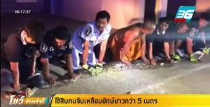 งูเหลือมยักษ์ บุกหมู่บ้าน กู้ภัยเกือบ 10 คน ช่วยจับ