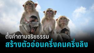 นักวิทย์สร้างตัวอ่อนครึ่งคนครึ่งลิง หวังแก้ปัญหาขาดแคลนอวัยวะปลูกถ่าย