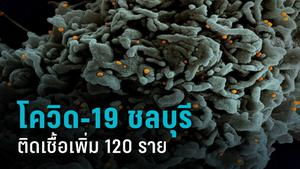 ชลบุรี เจอโควิด-19 เพิ่มอีก 120 ราย คสัสเตอร์สถานบันเทิง-สัมผัสผู้ติดเชื้อ