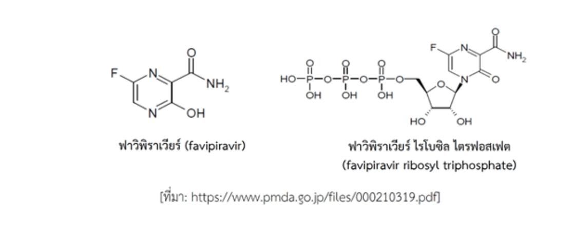 """รู้จัก """"ยาฟาวิพิราเวียร์"""" หนึ่งในยาต้านโควิดที่ไทยใช้"""