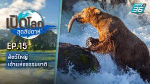 เปิดโลกสุดสัปดาห์ ตอน  สัตว์ใหญ่เจ้าแห่งธรรมชาติ   24 เม.ย.64