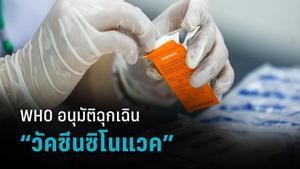 """เปิดผลอนุมัติฉุกเฉิน """"วัคซีนซิโนแวค"""" จากองค์การอนามัยโลก"""