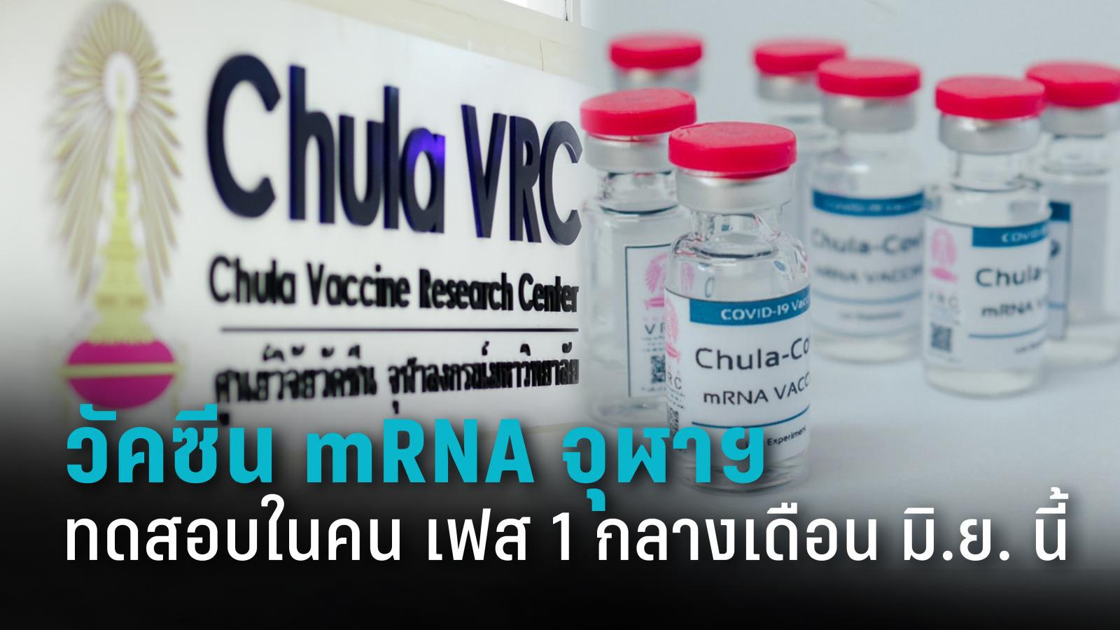 วัคซีน mRNA จุฬาฯ เตรียมทดสอบทางคลินิกเฟส 1 กลางเดือน มิ.ย. นี้