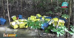 ยึดเฮโรอีน-ไอซ์ กว่า 1,000 กก. ซุกลังผลไม้ ซ่อนในป่าโกงกาง