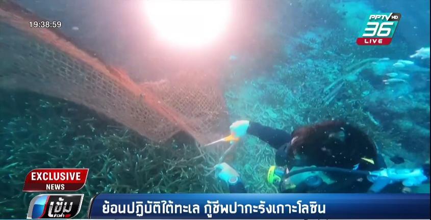 เปิดปฏิบัติการใต้น้ำ กู้ชีพปะการัง เกาะโลซิน