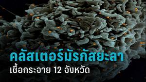 คลัสเตอร์มัรกัสยะลา พุงไม่หยุด เจอติดโควิด-19 อีก 102 ราย เชื้อกระจาย 12 จังหวัด