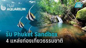 เปิด 4 แหล่งท่องเที่ยวธรรมชาติรับ Phuket Sandbox ตั้งแต่ 1 ก.ค. 64 เป็นต้นไป