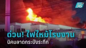 ระทึก! ไฟไหม้โรงงานเครื่องหอม นิคมฯลาดกระบัง เพลิงลุกท่วม มีแอลกอฮอล์จำนวนมากภายใน