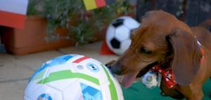 อังกฤษ หรือ อิตาลี ทีมใดจะเป็นแชมป์ยูโร อาร์ทูดีทู เลือกแล้ว