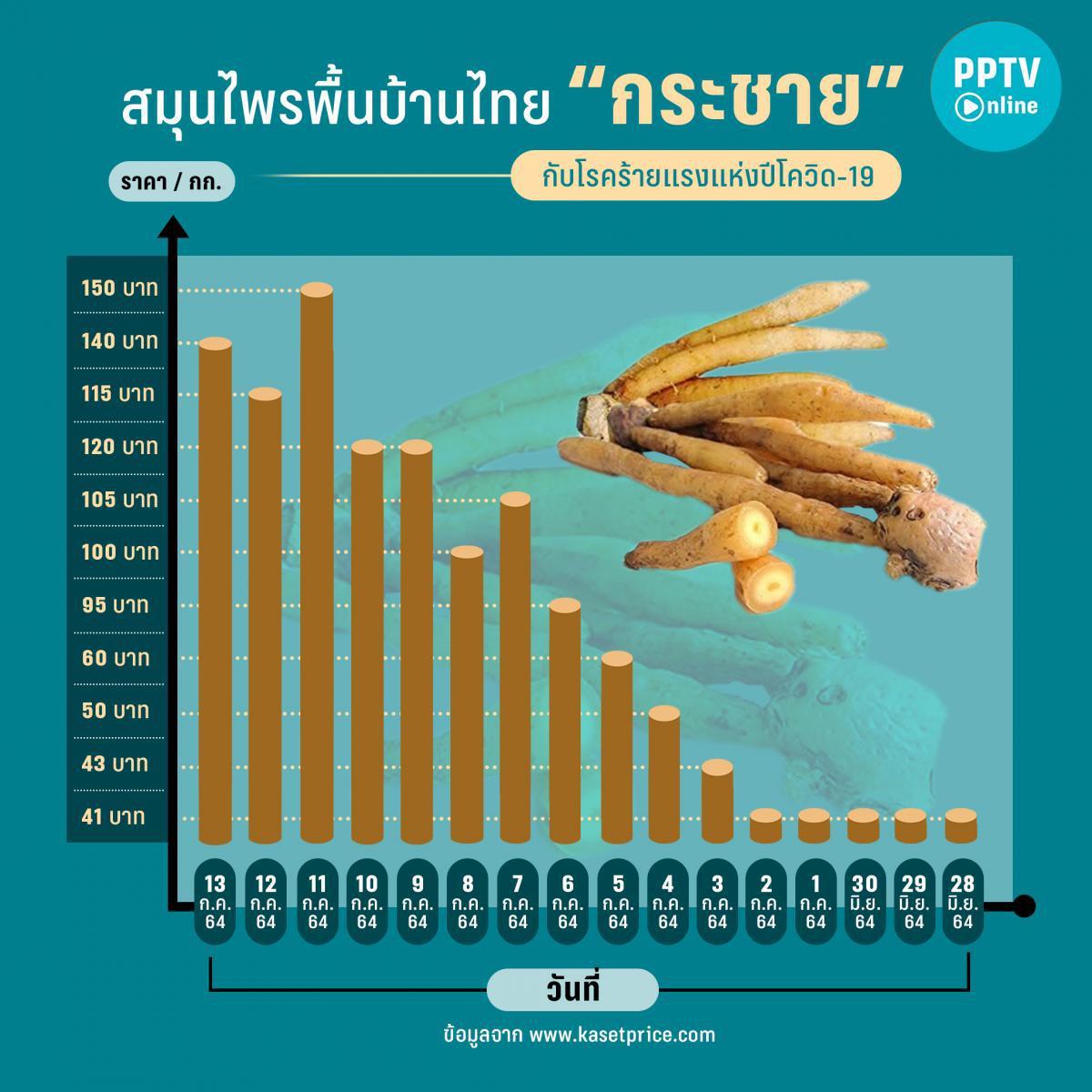 """ราคาพุ่ง """"กระชาย"""" สมุนไพรพื้นบ้านไทย ต้านโควิด-19 สูงขึ้นกว่า 30%"""