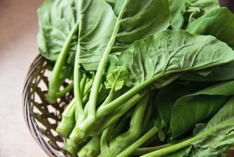 """แนะวิธีปลูกผัก 5 ชนิด ที่ไว้เก็บกินช่วง """"ล็อกดาวน์"""""""