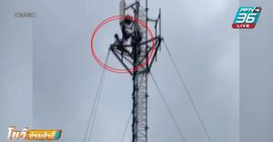 ปีนเสาสื่อสารสูง 60 เมตรประชดรัก