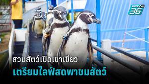 สวนสัตว์เปิดเขาเขียว ปิดบริการชั่วคราว เตรียมไลฟ์สดพาชมสัตว์ผ่านจอมือถือ