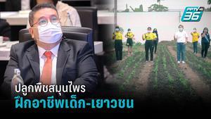 กรมพินิจฯ จัดโครงการปลูกพืชสมุนไพร ช่วยฝึกอาชีพเด็ก-เยาวชน