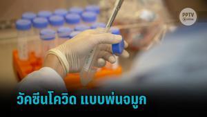 สวทช. พัฒนาวัคซีนโควิด-19 แบบพ่นจมูก  เตรียมทดสอบในมนุษย์ปลายปีนี้
