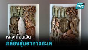 เตือนภัย มิจฉาชีพหลอกโอนเงิน กล่องสุ่มอาหารทะเล