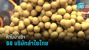 จีนสั่งห้าม นำเข้าลำไย 66 บริษัทไทย ด้าน ชาวสวนห่วงราคาร่วง