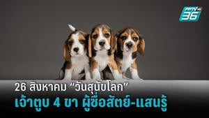 """26 สิงหาคม """"วันสุนัขโลก"""" เฉลิมฉลองวันของเพื่อน 4 ขาผู้ซื่อสัตย์"""